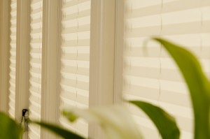Installed pleated thermal blinds in conservatory