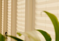 Window Blinds close up