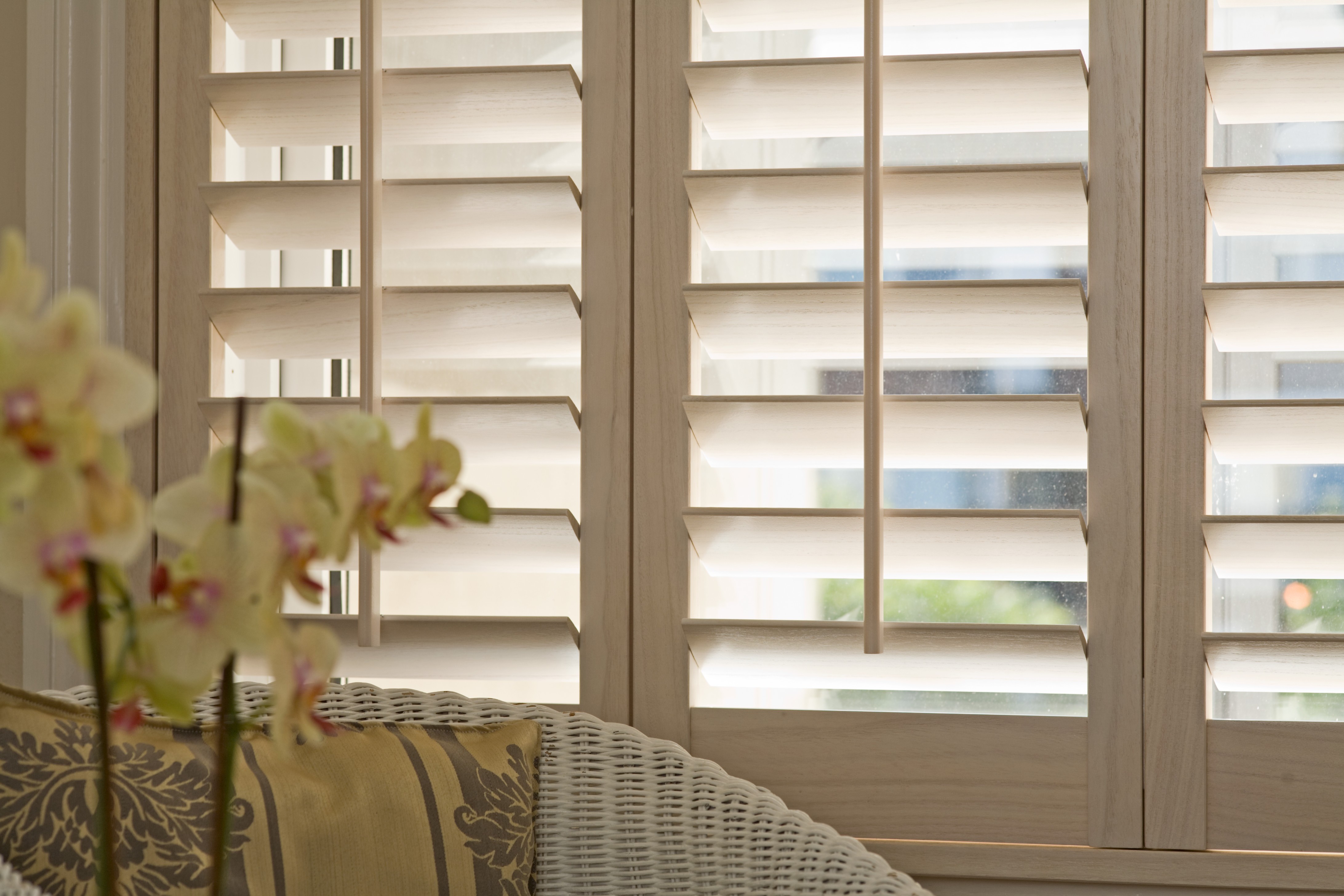 pin home at carnival peony choose roller pinterest blinds classic