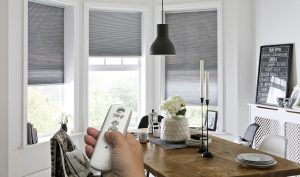 Electric Window Blinds and Shutters