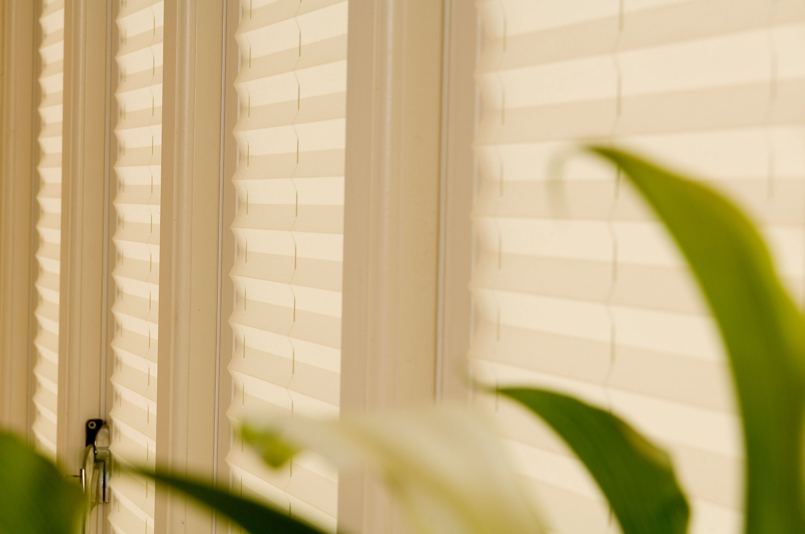pleated blinds for conservatories & orangeries
